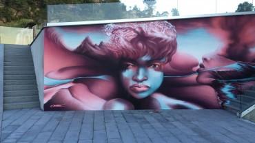 Gatekunstneren Nemes har tømt siste sprayboks med maling